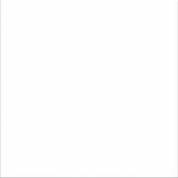 BASE WHITE